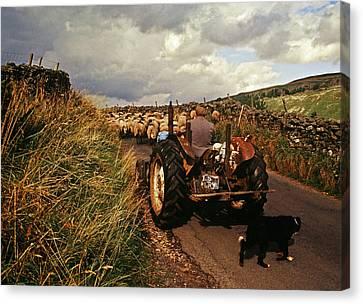 The Yorkshire Shepherd Canvas Print by John Topman
