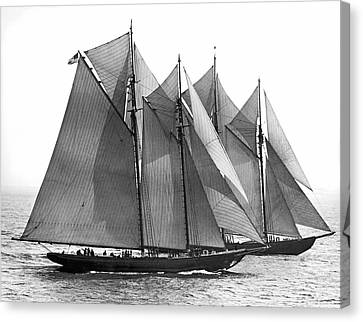 Activity Canvas Print - Thebaud Passes Bluenose by Underwood Archives