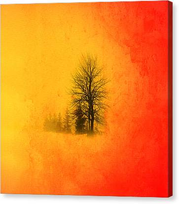 Thee Tree  Canvas Print by Mark Ashkenazi