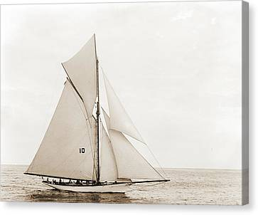 Thelma, Thelma Yacht, Yachts Canvas Print by Litz Collection