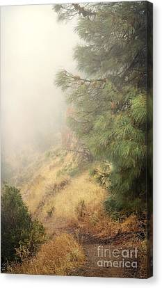 Canvas Print featuring the photograph There And Back Again 2 by Ellen Cotton