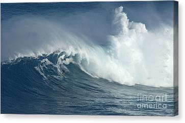 There Are Giants Canvas Print by Bob Christopher