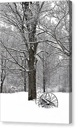 There Is A Kind Of Hush Canvas Print by Diane E Berry