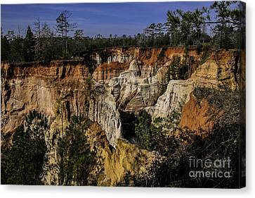 Beauty In Erosion Canvas Print