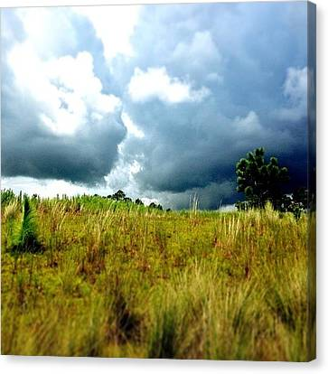 There's A Storm Brewing!!! #golf Canvas Print by Scott Pellegrin