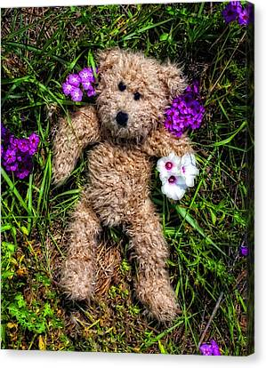 These Are For You - Cute Teddy Bear Art By William Patrick And Sharon Cummings Canvas Print by Sharon Cummings