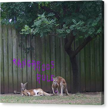 They Will Never Think It Was Us.. Canvas Print by Nina Fosdick