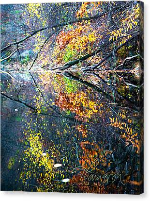 Canvas Print featuring the photograph They Wink At Me by Tom Cameron