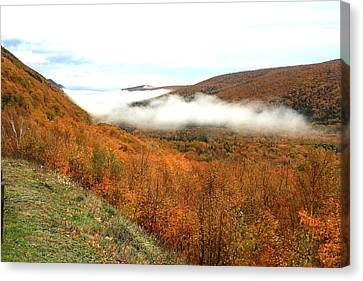 Thick Fog Canvas Print