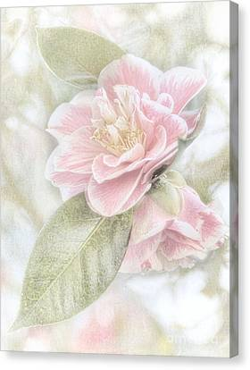 Think Pink Canvas Print by Peggy Hughes