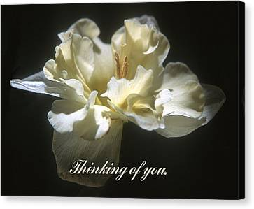 Canvas Print - Thinking Of You. by Harold E McCray