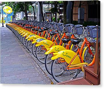 Thirty Yellow Bicycles In Taipei Canvas Print by Tony Crehan