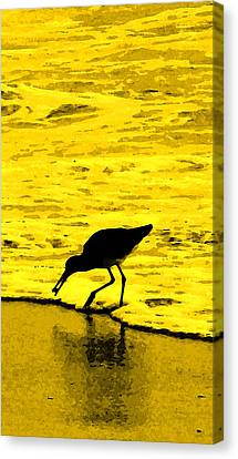 Sea Birds Canvas Print - This Beach Belongs To Me by Ian  MacDonald