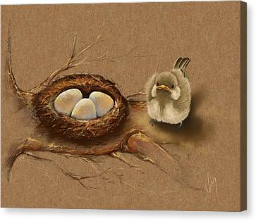 This Is My Nest? Canvas Print by Veronica Minozzi