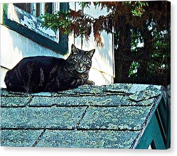 This Is My Roof Canvas Print