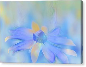 This Is Not Just Another Flower - S05a Canvas Print by Variance Collections