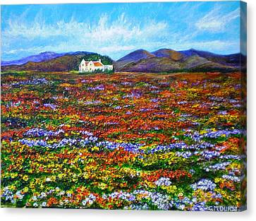 This Must Be Heaven Canvas Print by Michael Durst