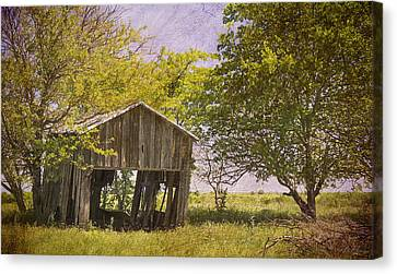 Wood Shed Canvas Print - This Old Barn by Joan Carroll