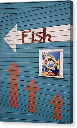 This Way To The Fish Canvas Print by Carol Leigh