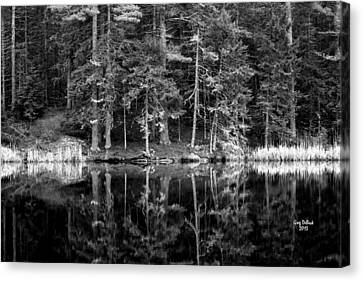 This World Of Ours Canvas Print by Greg DeBeck