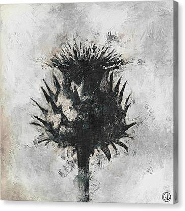 Thistle Canvas Print by Gun Legler