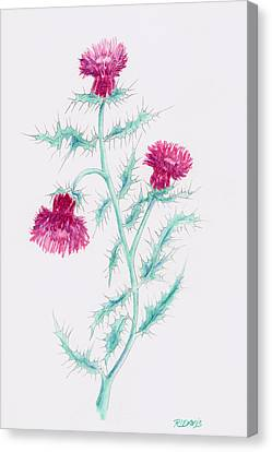 Canvas Print featuring the painting Thistle by Rebecca Davis