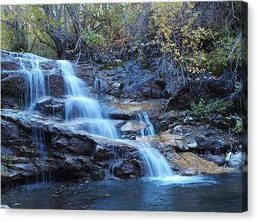 Canvas Print featuring the photograph Thomas Creek Falls by Jenessa Rahn