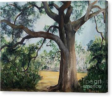 Thomasville Oak Canvas Print by Mary Lynne Powers
