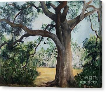 Thomasville Oak Canvas Print