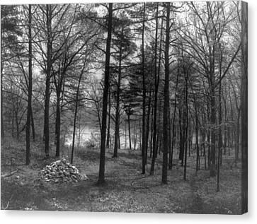 Walden Pond Canvas Print - Thoreau Walden Pond by Granger