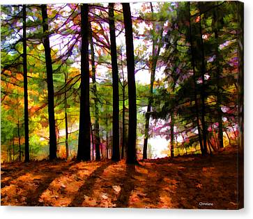 Thoreau's View Of Walden Pond Canvas Print by Tom Christiano
