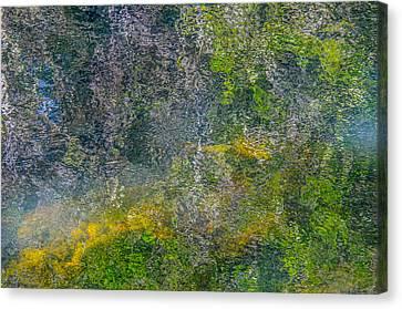 Thornton's Canvas Canvas Print by Roxy Hurtubise