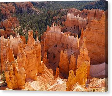 Thor's Hammer At Bryce Canyon In Utah Canvas Print by Alex Cassels