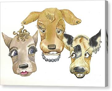 Those Girls Are Dogs. Canvas Print by Donna Acheson-Juillet