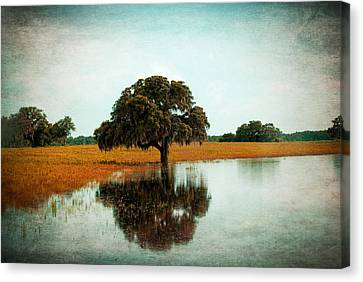 Thoughtful Reflection Canvas Print