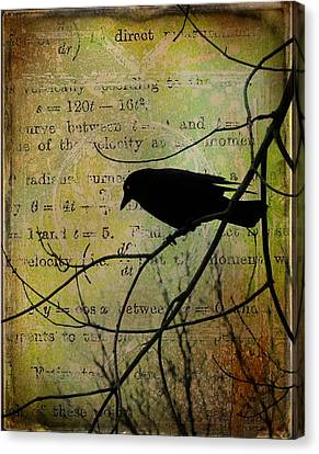 Thoughts Of Crow Canvas Print by Gothicrow Images