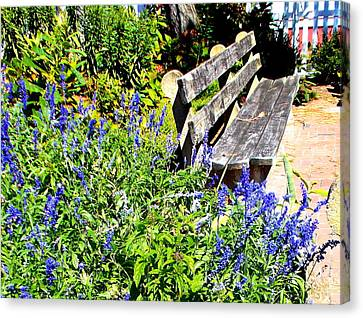 Thoughts On The Weathered Bench Canvas Print by Pamela Hyde Wilson