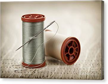 Thread And Needle Canvas Print by Elena Elisseeva