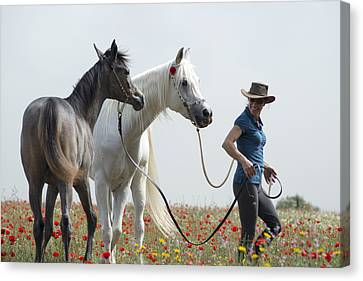 Three At The Poppies' Field... 1 Canvas Print