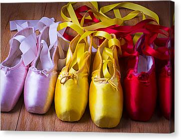 Three Ballet Shoes Canvas Print by Garry Gay