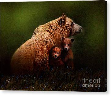Three Bears Canvas Print by Robert Foster