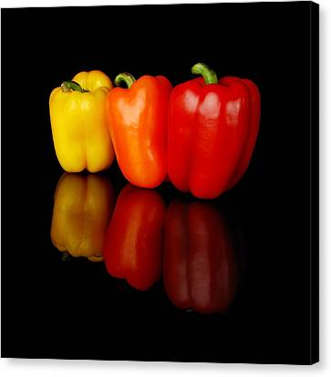 Three Bell Peppers Canvas Print by Jim Hughes