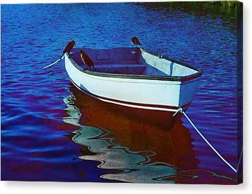 Delphin 3 Canvas Print by Laura Fasulo