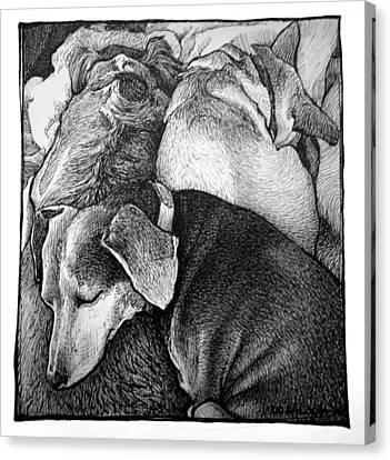 Three Dog Night Canvas Print by Lorraine Zaloom