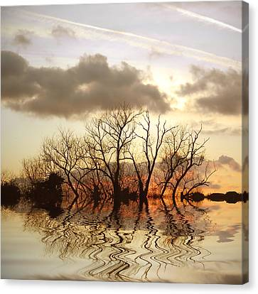 Bare Trees Canvas Print - Three Elements by Sharon Lisa Clarke