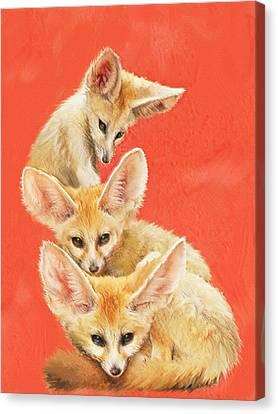 Three Fennec Foxes Canvas Print by Jane Schnetlage