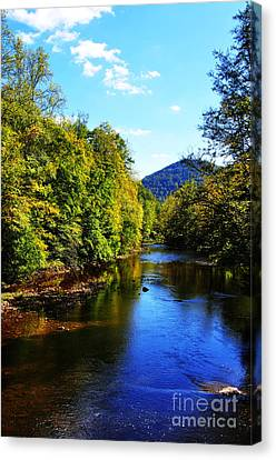 Williams River Canvas Print - Three Forks Williams River Early Fall by Thomas R Fletcher