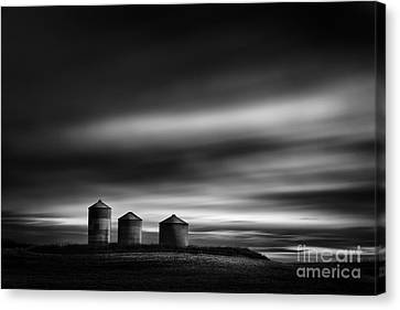 Three Friends Canvas Print by Dan Jurak