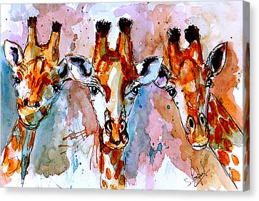 Winter Light Canvas Print - Three Friends by Steven Ponsford