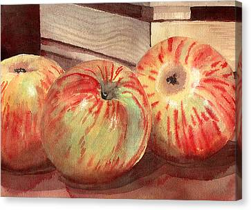 Blendastudio Canvas Print - Three Fuji Apples Blenda Studio by Blenda Studio